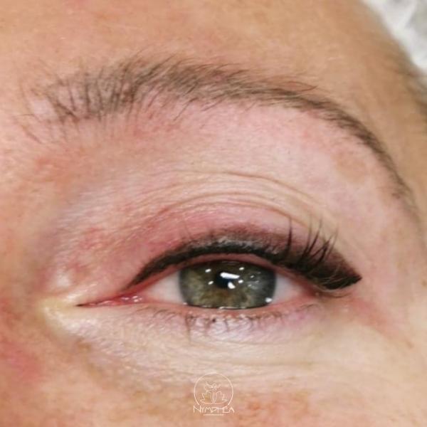 Oeil d'une femme avec dermographie eyeliner poudré